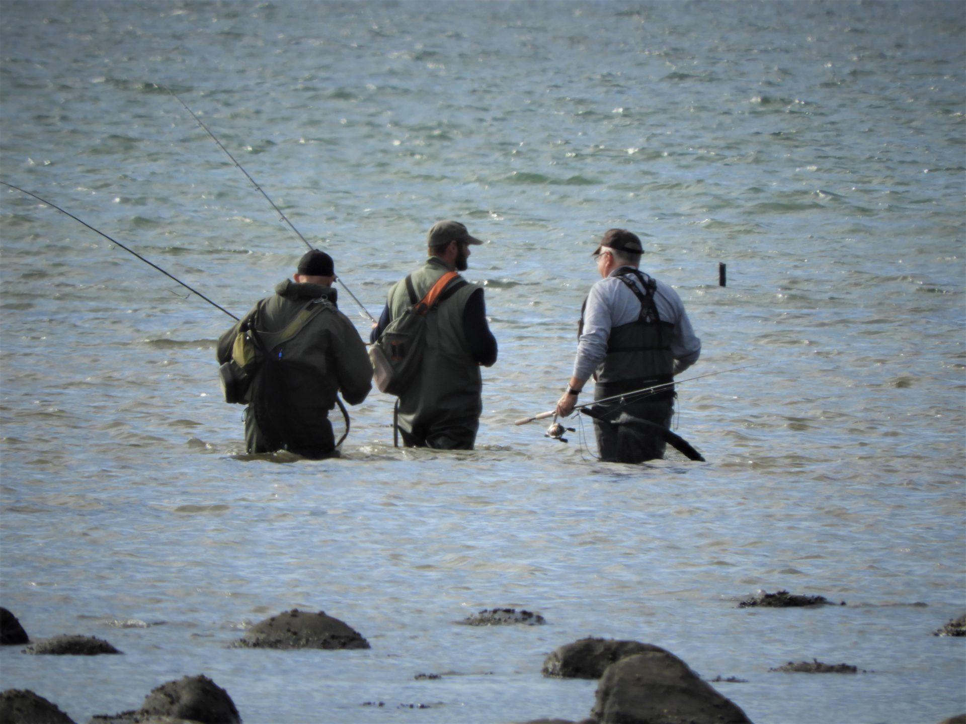 Guidede fisketure ved Limfjorden kan bookes her.