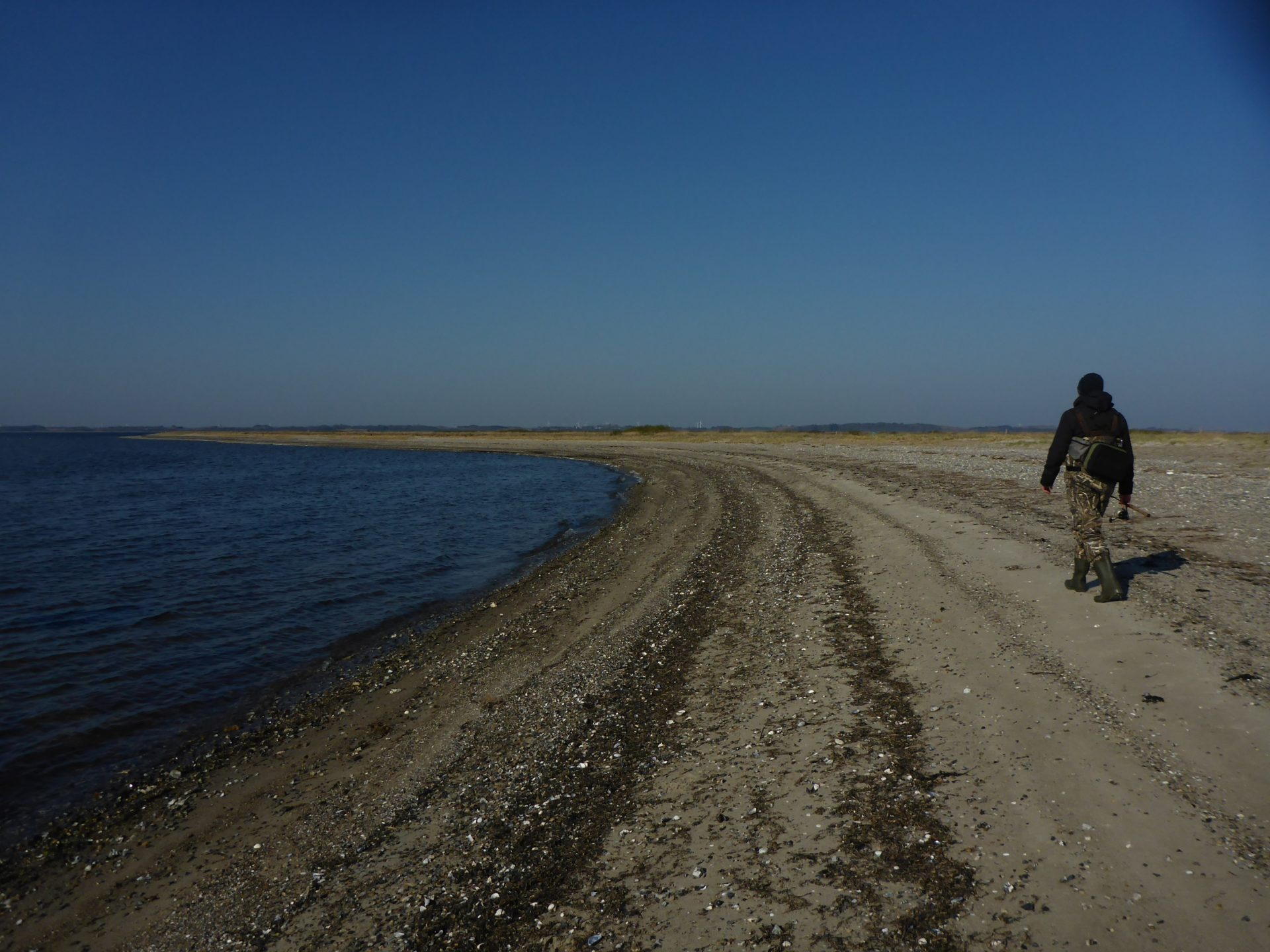 Risgårde i den sydlige del af Limfjorden er en glimrende fiskeplads til fangst af havørred i sommerhalvåret.