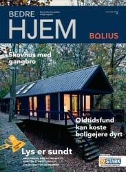 Thomas Hjort rådgiver om at få dagslys ind i boligen i Bedre Hjem