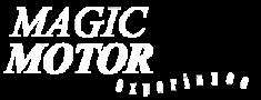 MagicMotorExperience