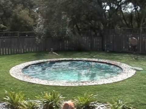 pool på gräsmattan