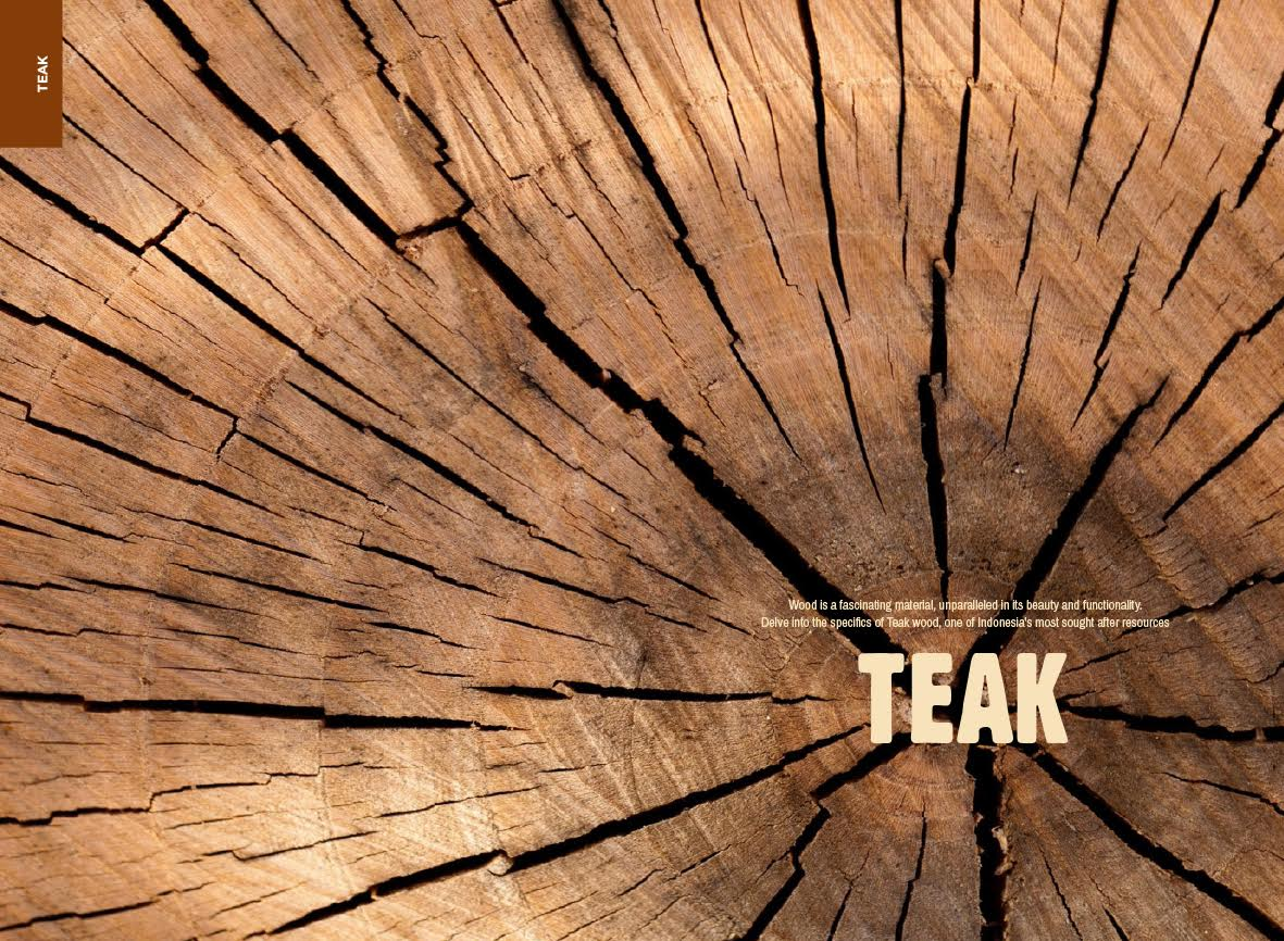 Teak: Indonesia's Precious Wood