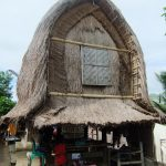 Traditional_Sasak_Village_Sade_rice_barn