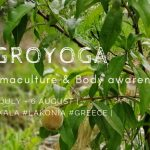 Agroyoga Flyer 2019