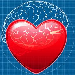 Fakta om hjertet