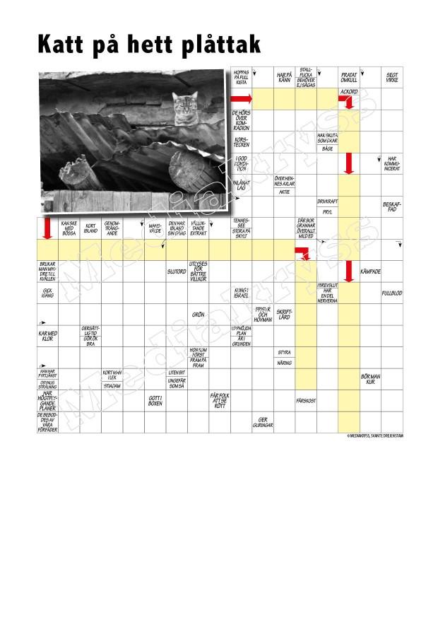 Korsord 105 – Katt pa hett plattak