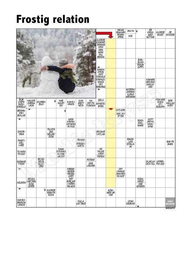 Korsord 382 – Frostig relation