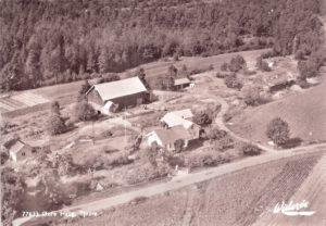 gnr. 18, bnr. 7.- 1950