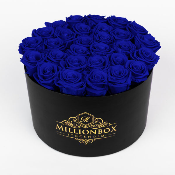 Lavinia Bello with Blue Rose | Millionbox.se