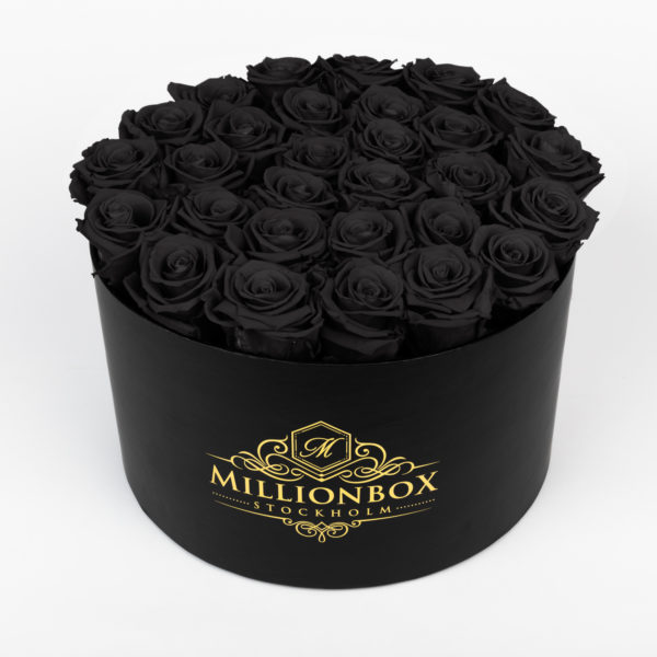 Lavinia Bello with Mystique Rose | Millionbox.se