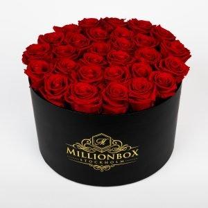Lavinia Bello with Red Rose | Millionbox.se