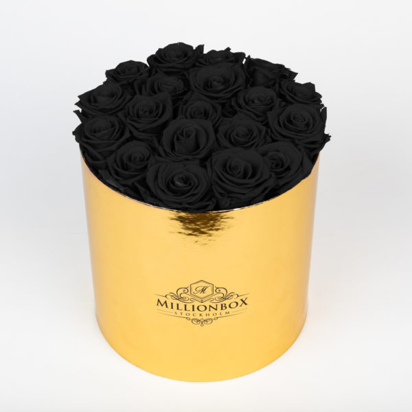 Lavinia Gold with Mystique Rose | Millionbox.se