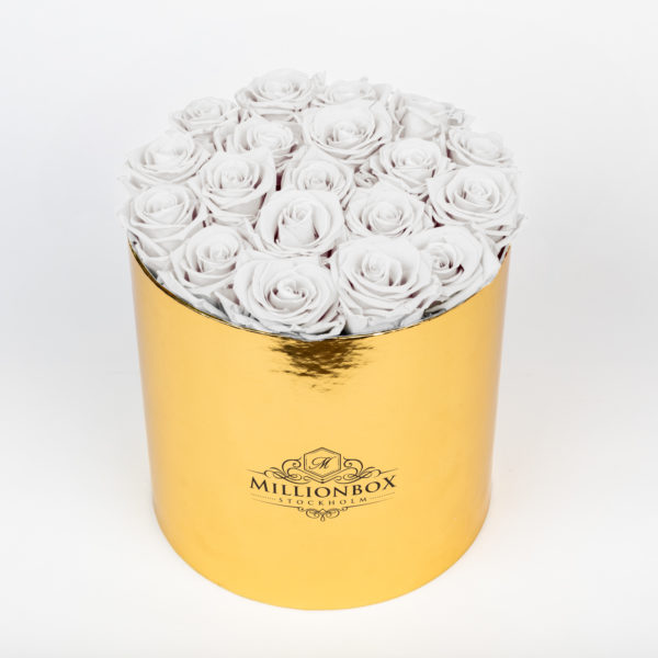Lavinia Gold with Snow Rose | Millionbox.se