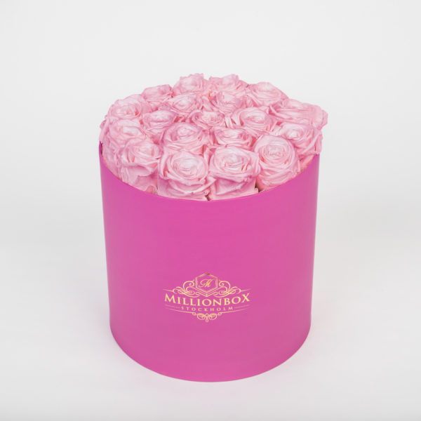 Lavinia Pink with Pink Rose | Millionbox.se