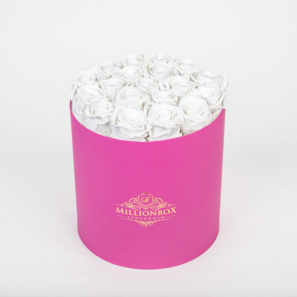 Lavinia Pink with Snow Rose | Millionbox.se