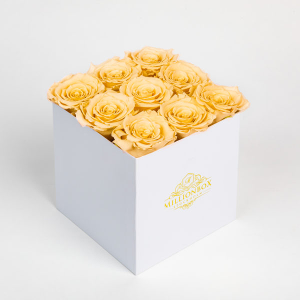 Levante Alora with Yellow Rose | Millionbox.se