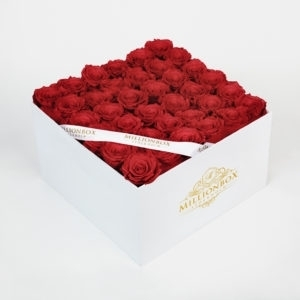 Levante Bella with Red Rose   Millionbox.se