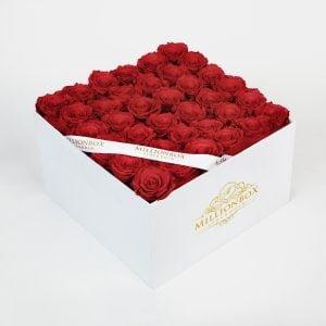 Levante Bella with Red Rose | Millionbox.se