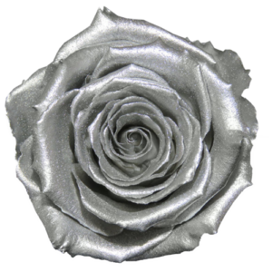 Silver Rose | Millionbox.se