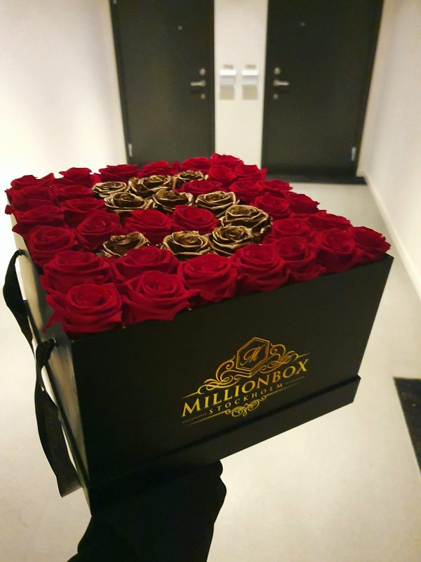 Levante Litiare   Delivery   Millionbox.se