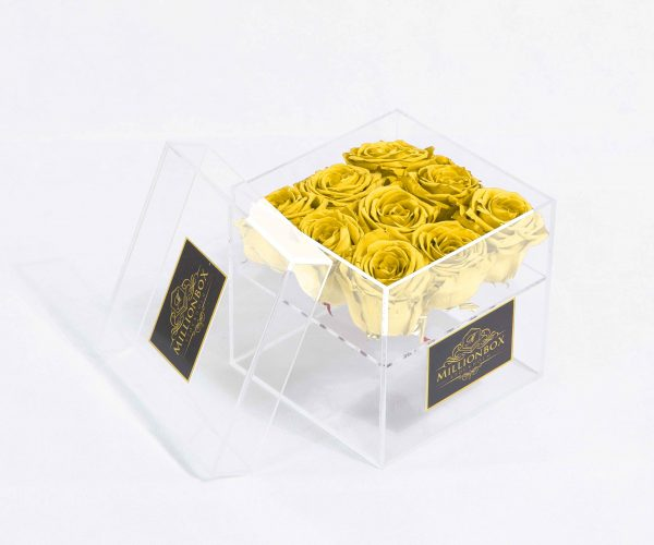 Infinity Nine | Easter Yellow | Millionbox.se