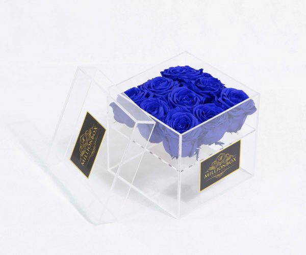 Infinity Nine | Ocean Blue | Millionbox.se
