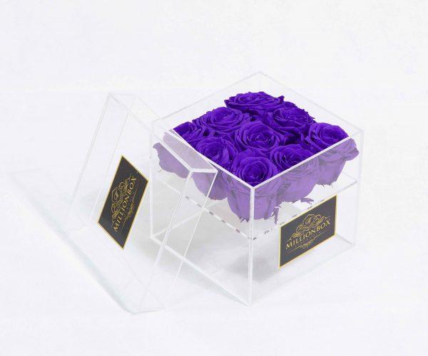 Infinity Nine | Purple Night | Millionbox.se