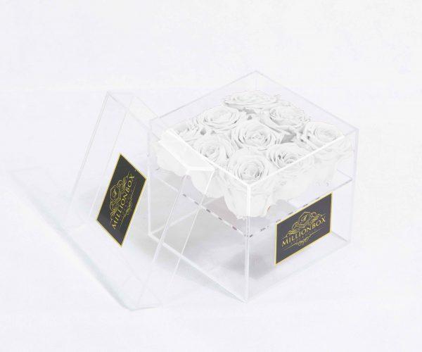 Infinity Nine | White Snow | Millionbox.se
