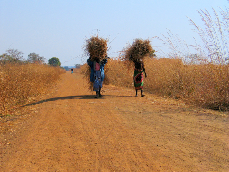 Mpongwe District Copperbelt Zambia Photo Copyright Kathleen Paulsson 2007