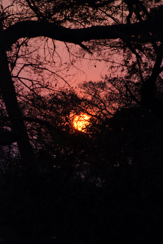 Sunset over Mpongwe Zambia Photo Copyright Matt Roe 2008
