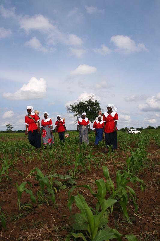 MBA Widow Project Zambia 2008