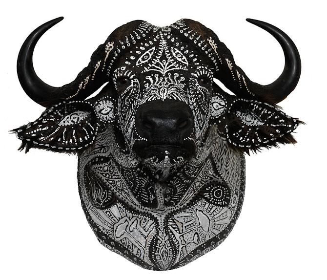 Og en bøffel
