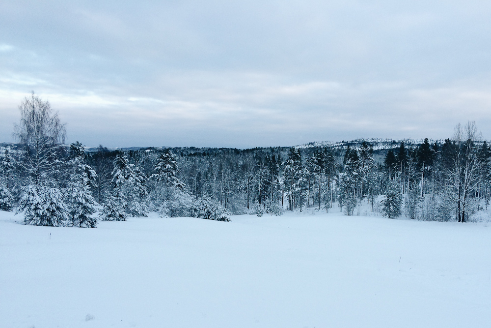 Vi er i Norge og på en gård - her har du et foto fra dagen i dag. Og bare vent - det bliver endnu mere idylisk
