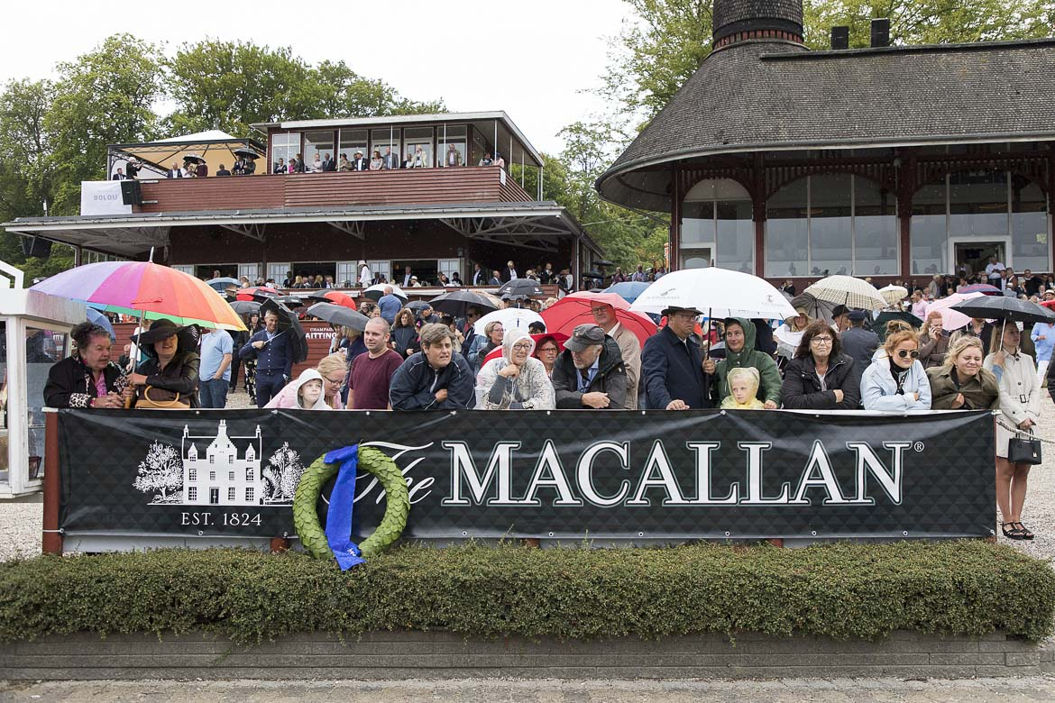 The Macallan Derby