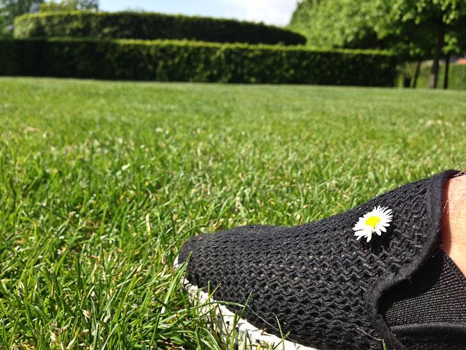 Sommertid og grønt græs