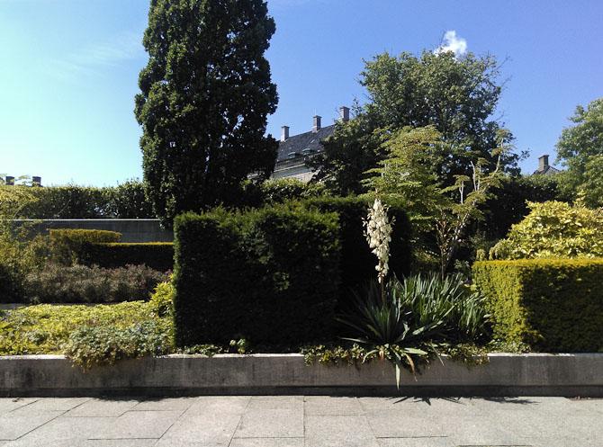Den kubistiske have