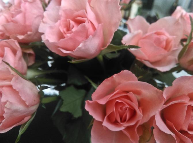 Min mor kom sørme med blomster