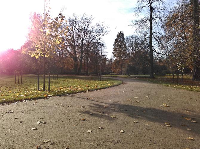 Frederiksberg Have er ved at blive godt