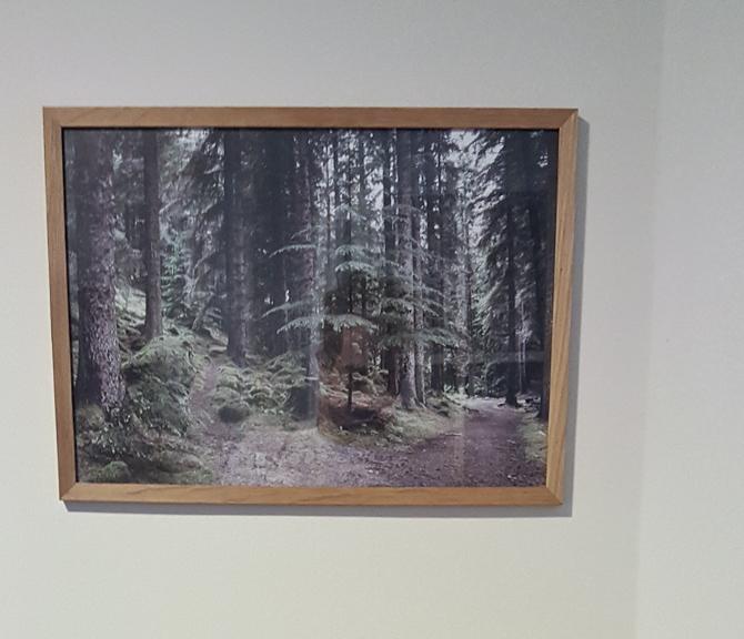 Der kom fotokunst på væggen