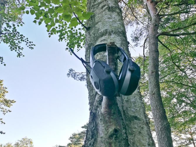 Ud i naturen, hvor selv træerne kan have brug for ro