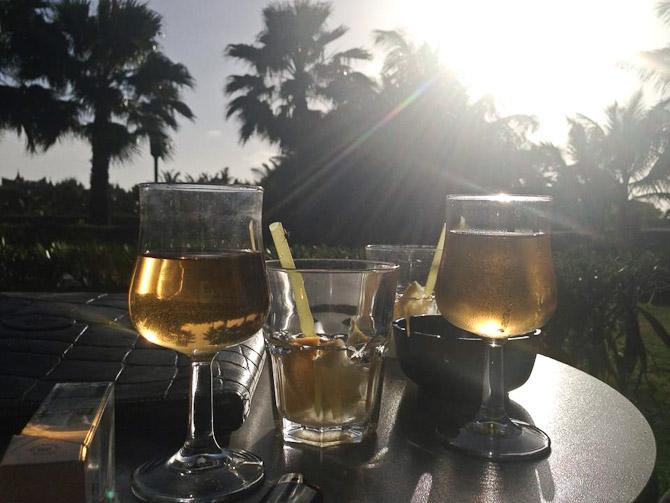 Palmesus og aftensjus