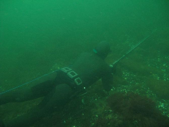 En jæger på jagt under havoverfladen