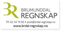 Annonser Brumunddal Regnskap