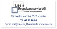 Annonser Lises Regnskapservice