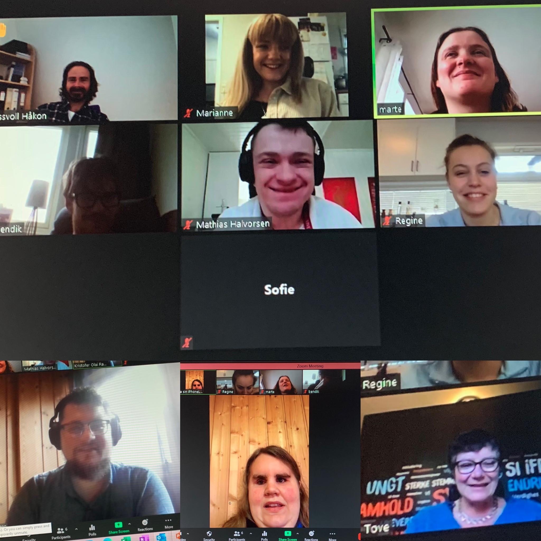 Bilde fra det digitale årsmøtet til NHFU Nord-Norge, med deltakere.