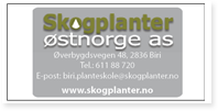 Annonse Skogplanter ØstNorge