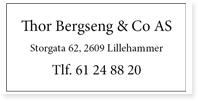 Annonse Thor Bergseng Og Co AS