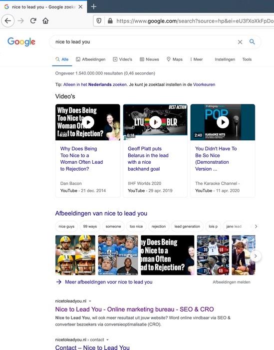 Desktop zoekopdracht op 9 juni voor bedrijfsnaam Nice to Lead You