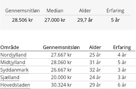 Webdesigner gennemsnitlig løn