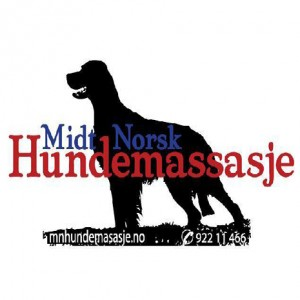 mnhundemassasje-4